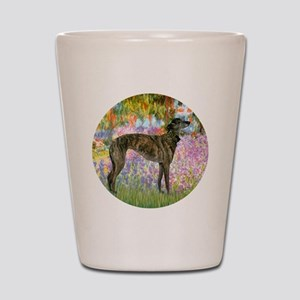R-Garden-Greyhound-brindle Shot Glass