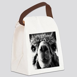 11x11 say cheese Canvas Lunch Bag