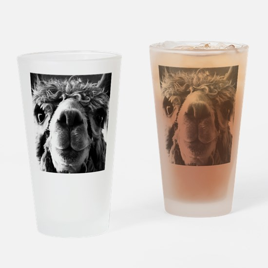 11x11 say cheese Drinking Glass