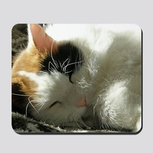 Sleeping Kitty Mousepad