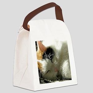 Sleeping Kitty Canvas Lunch Bag