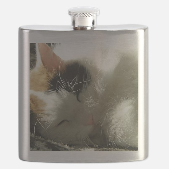 Sleeping Kitty Flask