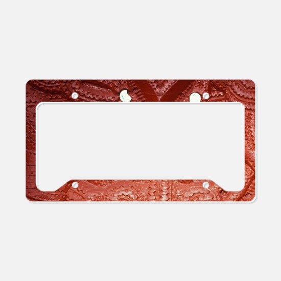 Whakarewarewa Thermal Reserve License Plate Holder