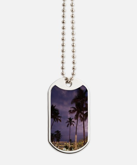 Dominican Republic, Punta Cana Region, Ba Dog Tags