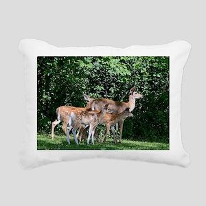 14x10_print 2 Rectangular Canvas Pillow