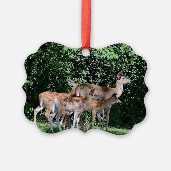 14x10_print 2 Ornament