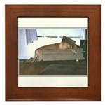 Dog tired Framed Tile