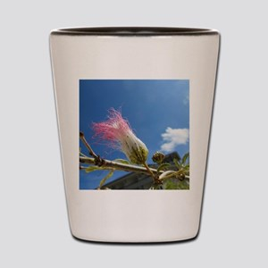 IMG_1148 Shot Glass