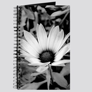 Black and White Daisy Journal