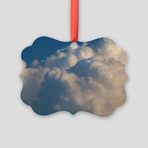 P1290005110706 copy Picture Ornament