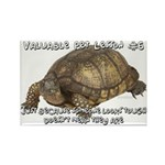 Valuable Pet Lesson #6 Rectangle Magnet (100 pack)