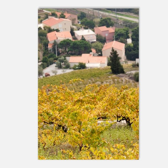 Pyrennes-Orientales Depar Postcards (Package of 8)
