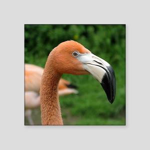 "flamingo Square Sticker 3"" x 3"""