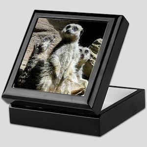 meerkats Keepsake Box