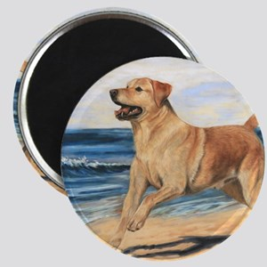 Lab on Beach Magnet