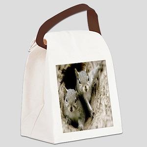 Baby Squirrels Canvas Lunch Bag