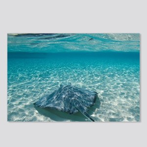 Underwater view of Southe Postcards (Package of 8)