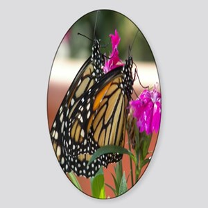 Twin Monarchs kindle sleeve Sticker (Oval)