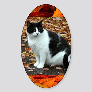 Tuxedo Cat Sticker (Oval)