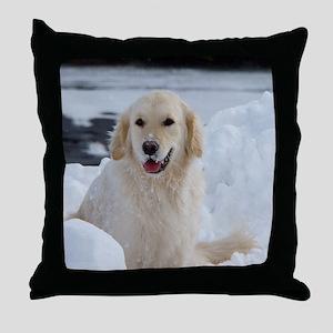 963321_35017022 Throw Pillow