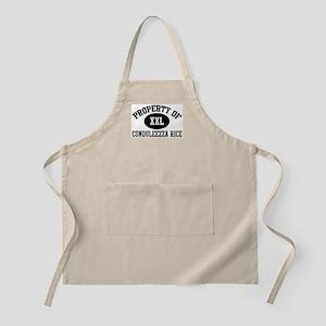 Property of Condoleezza Rice BBQ Apron