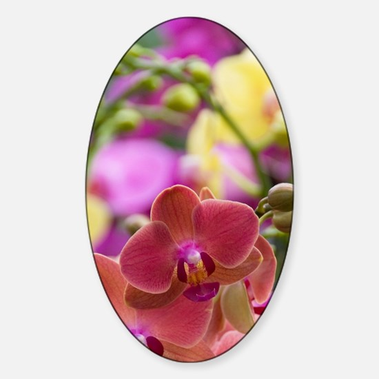 Full frame of bright colorful flowe Sticker (Oval)