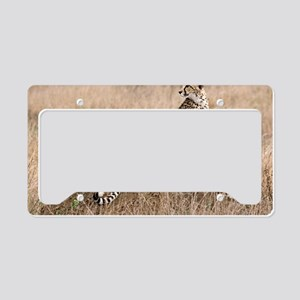 79c9cd5cde Cheetah and cubs5 -large License Plate Holder