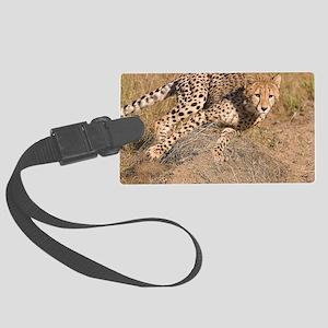 Cheetah cub Large Luggage Tag