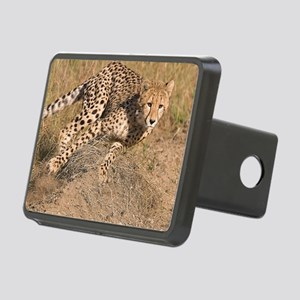 Cheetah cub Rectangular Hitch Cover