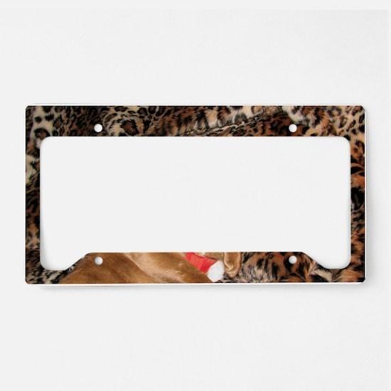 IMG_0272_ZA_long License Plate Holder
