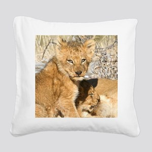 Charleston Cubs Suckling Square Canvas Pillow