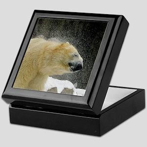 polar shake Keepsake Box