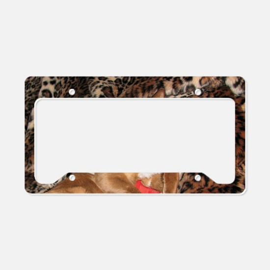IMG_0273_ZA_long License Plate Holder
