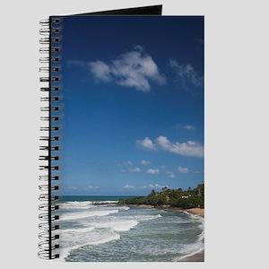 Puerto Rico, West Coast, Rincon, Domes Bea Journal