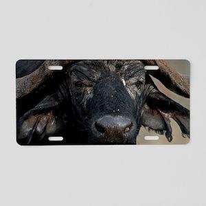 African Buffalo Aluminum License Plate