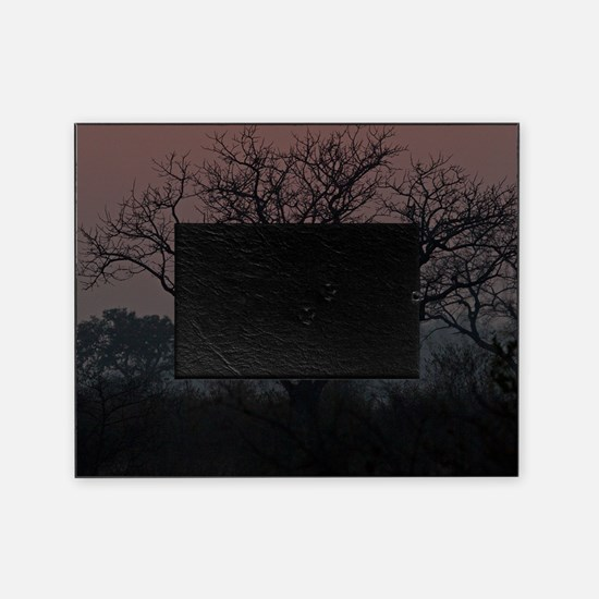 Sunset at Londolozi Picture Frame