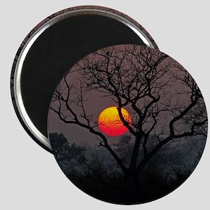 Sunset at Londolozi Magnet