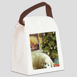 misty_6_900x9_100_inch Canvas Lunch Bag