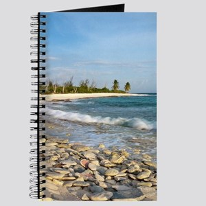 Waves crashing on crushed coral and coral  Journal