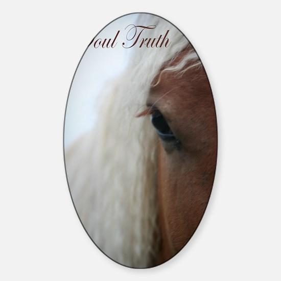 Soul Truth Sticker (Oval)