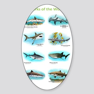 Sharks of the world Sticker (Oval)