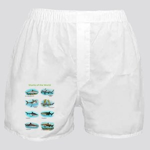 Sharks of the world Boxer Shorts
