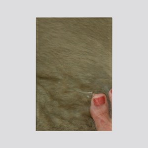 Magens Bay. Bare feet with polish Rectangle Magnet