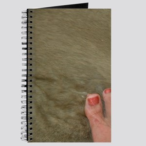 Magens Bay. Bare feet with polished toes i Journal