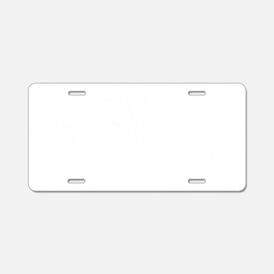 evolution Aluminum License Plate