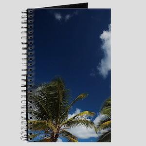 Puerto Rico, North Coast, Dorado, Dorado B Journal