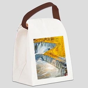 bondFalls_HDR_8X10 Canvas Lunch Bag