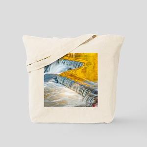 bondFalls_HDR_8X10 Tote Bag