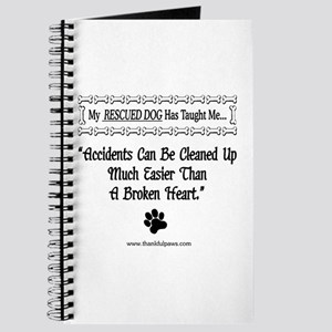 Accidents Can Be Cleaned Up Journal