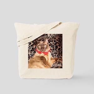 IMG_0271_YO_pillow2 Tote Bag